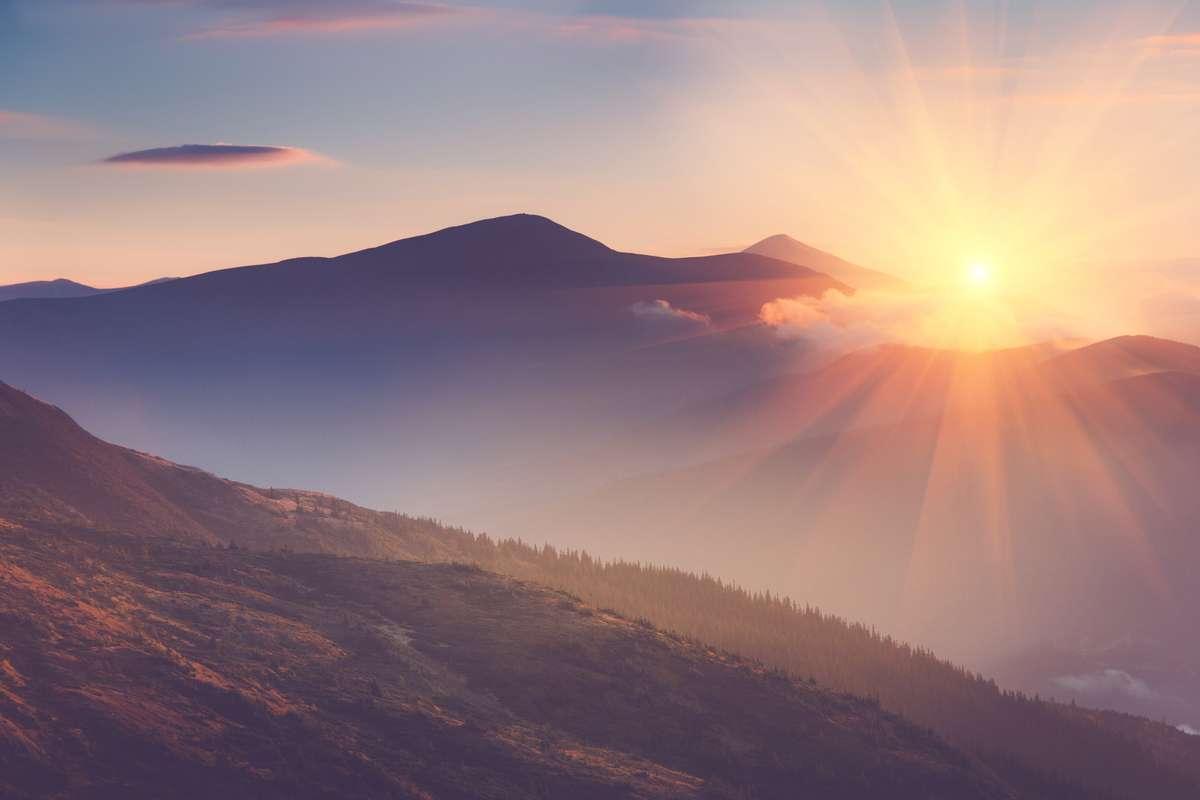 Was ist die Sommersonnenwende? Foto: Volodymyr Martyniuk/Shutterstock