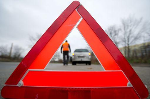 Tierliebe Autofahrer sorgen für Gefahr auf der Autobahn