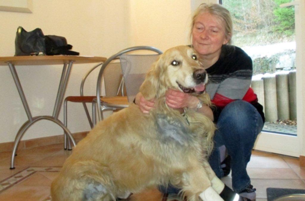 Andrea Weinschenk mit ihrem verletzten Golden Retriever Jazz. Ein Jäger soll den freilaufenden Hund im Wald aufgegriffen und nach Angaben der Besitzerin mit einer Kette an seinem Auto befestigt und durch die Straßen des Dorfes geschleift haben. Foto: dpa