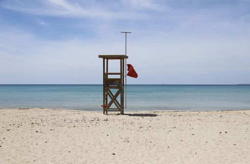 Mallorcas Natur blüht auf