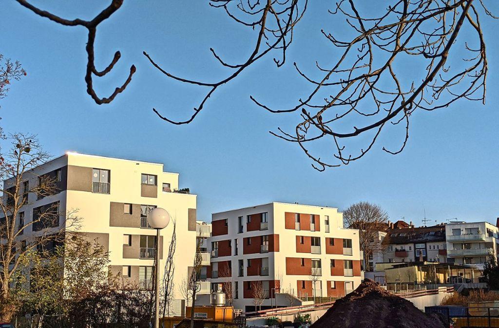 Auf dem Grundstück rechts neben den neuen Stadthäusern soll frühestens ab Mitte 2020 der geplante Gesundheitscampus entstehen. Foto: Jürgen Brand