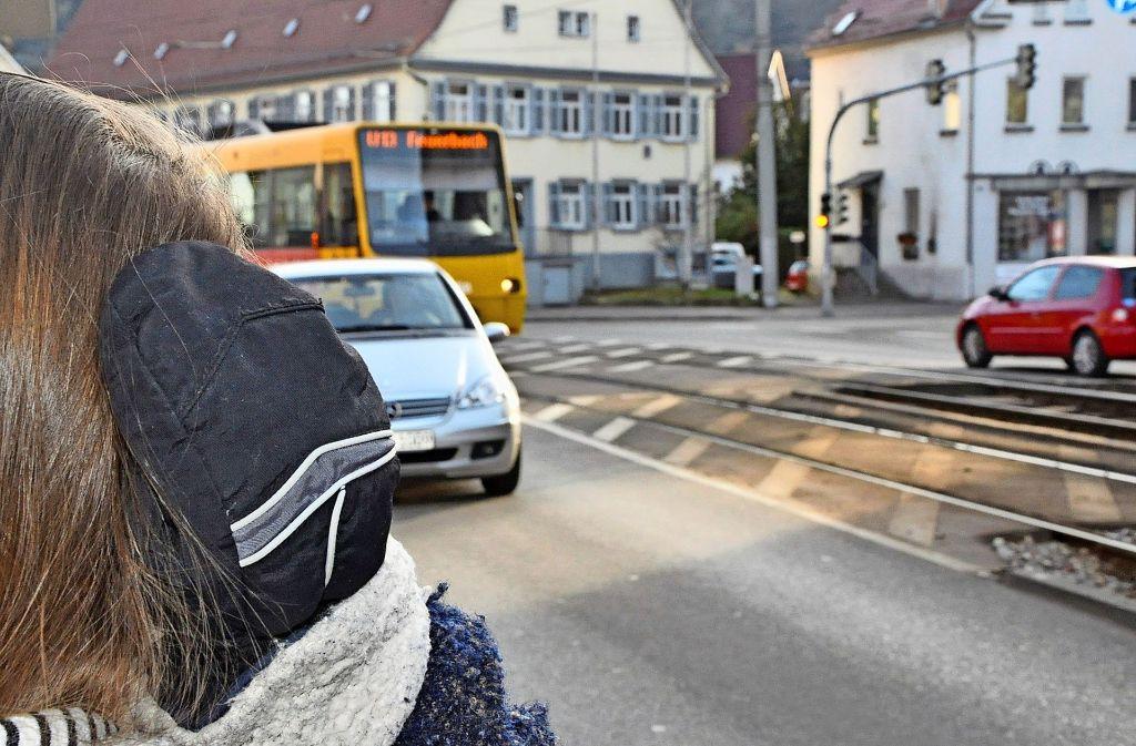 Zur Dämpfung des Lärms der Stadtbahn in den Kurven fordert der Bezirksbeirat eine Begrünung der Schottertrasse Foto: Georg Linsenmann