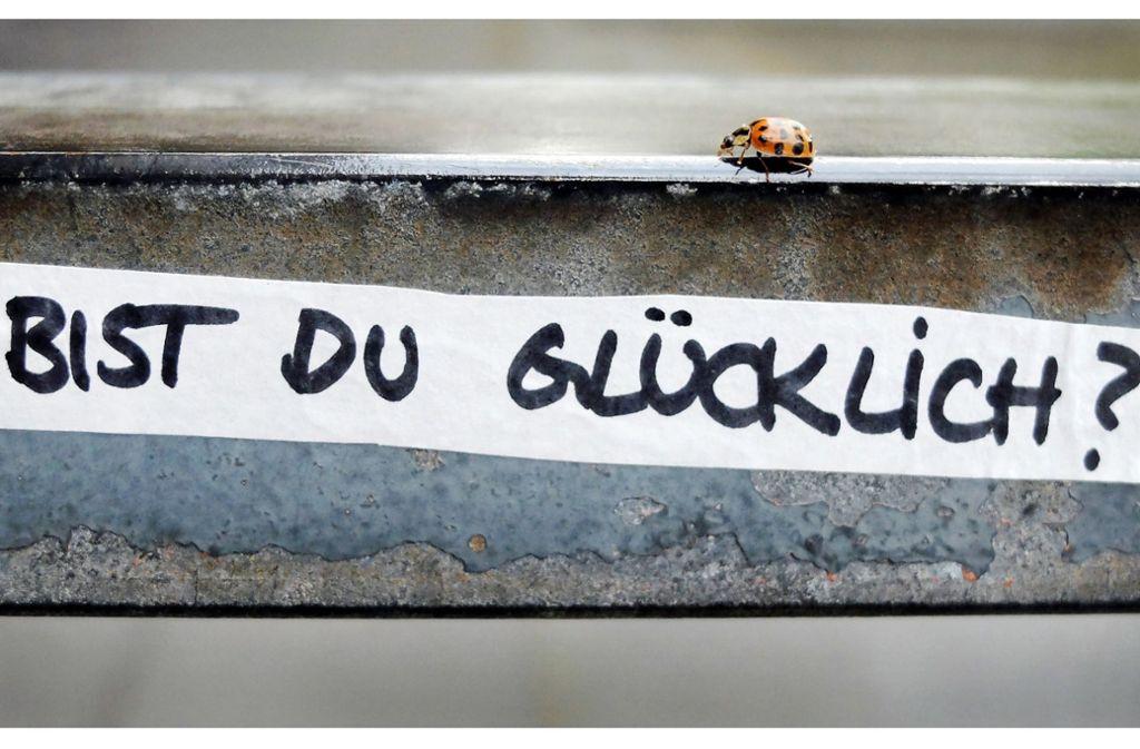 """Ein Marienkäfer krabbelt über ein Treppengelände, auf dem die Frage """"Bist du glücklich?"""" geschrieben steht. Man kann selbst sehr viel dafür tun, glücklich zu sein Foto: dpa"""