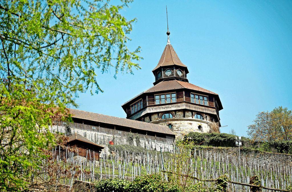 In den Dicken Turm soll wieder Leben einkehren. Foto: Horst Rudel