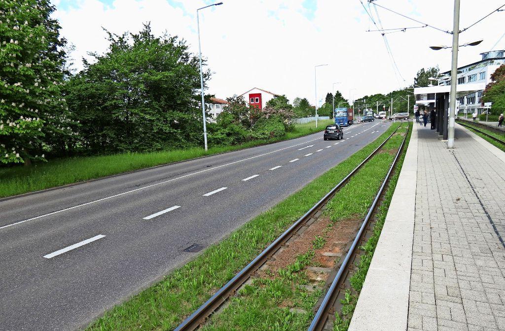 Zwischen Heumaden und Sillenbuch sind die Schienen begrünt. Foto: Julia Bosch