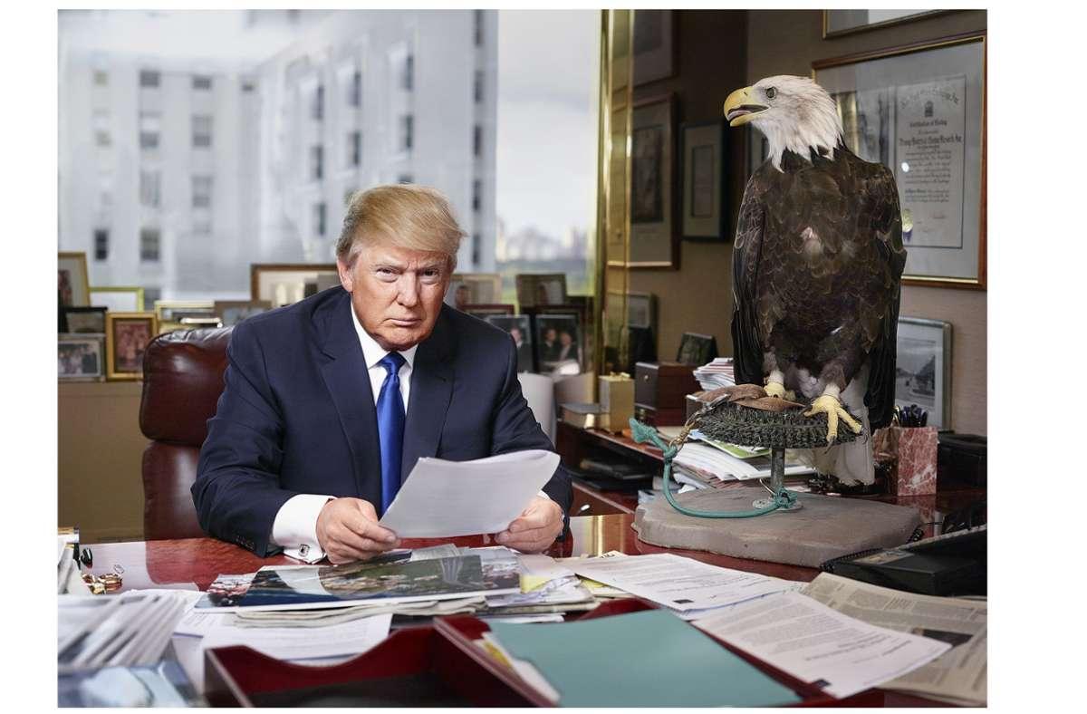 Da war er noch nicht Präsident: Unternehmer Donald Trump 2015 in seinem Büro nebst dem US-amerikanischen Wappentier.  Foto: Martin Schoeller