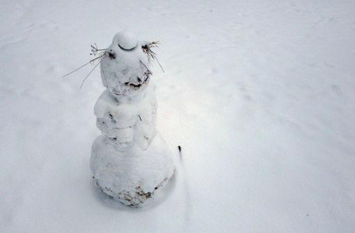 Toxische Schneemännlichkeit