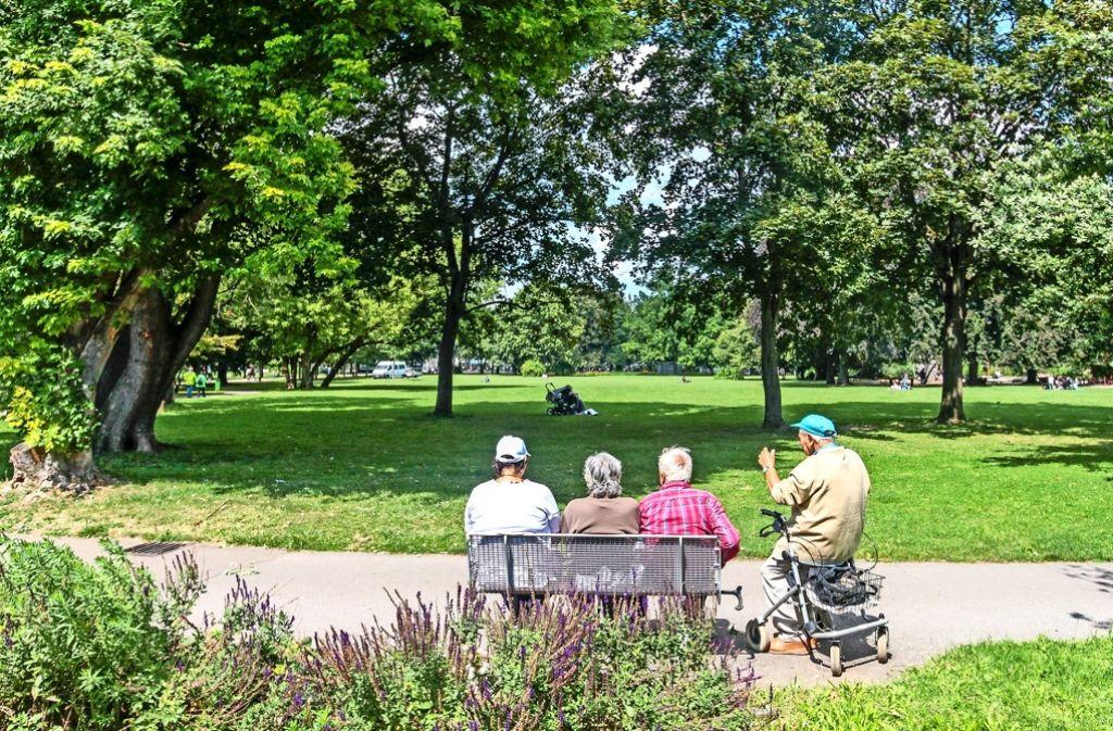 Ein Erholungsort für alle Generationen: Die Bärenwiese ist die grüne Lunge der Barockstadt Ludwigsburg. Foto: factum/Granville