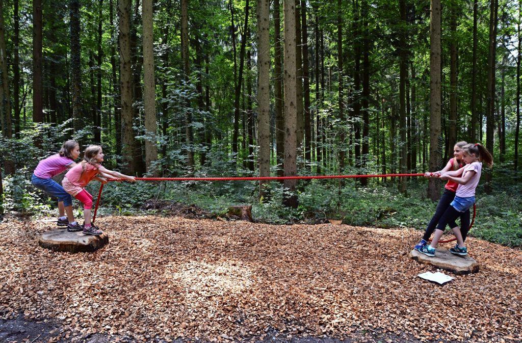 Wer stößt wen vom Baumstamm?  Beim Tauziehen im Wald entscheidet sich, wer die Stärkeren sind. Foto: Brock