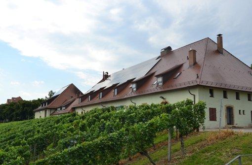 Sommerfest der Weingärtner