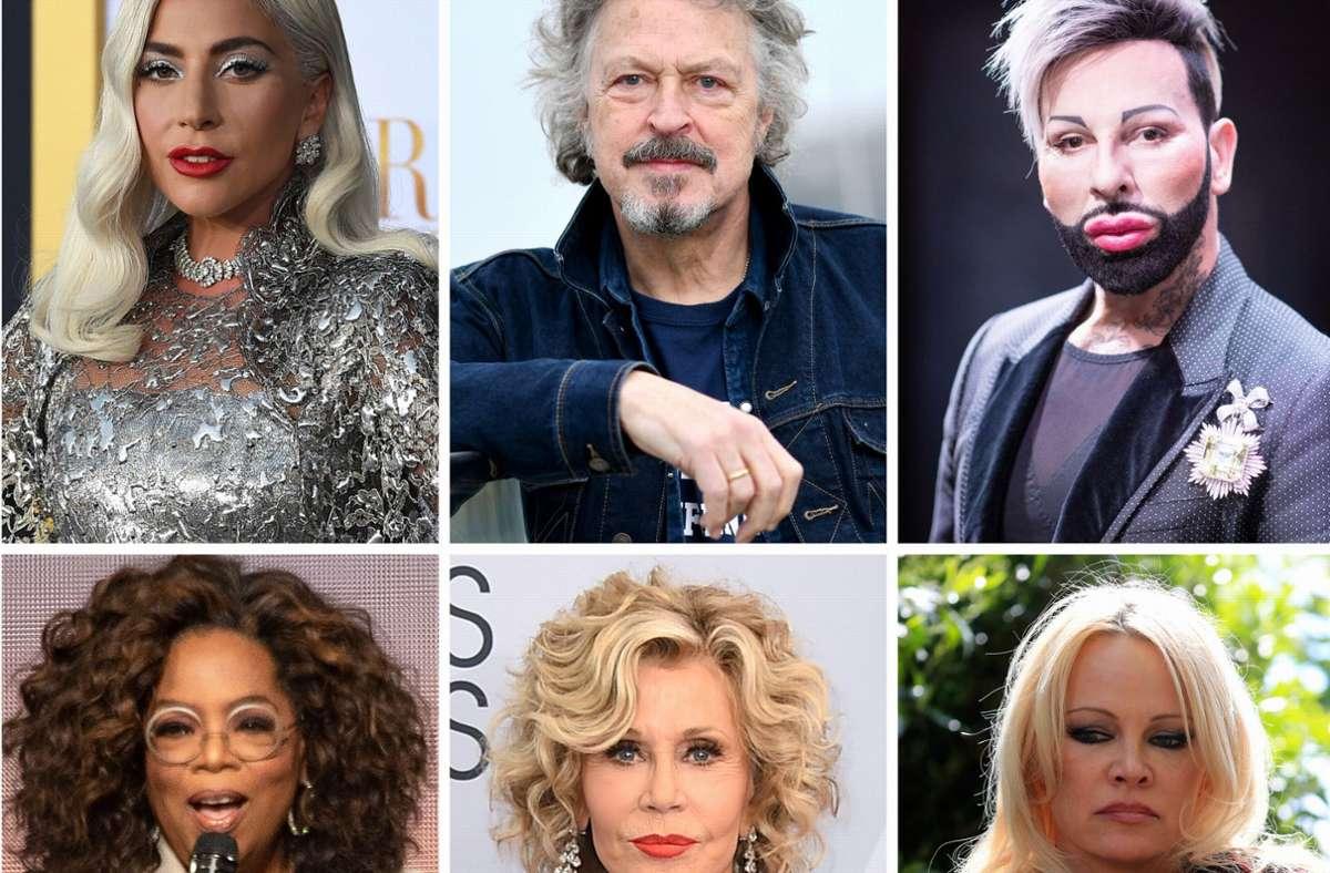 Bekannte Missbrauchsopfer, die darüber gesprochen oder geschrieben haben (von links oben):  Lady Gaga,  Wolfgang Niedecken, Harald Glööckler,  Oprah Winfrey,  Jane Fonda,  Pamela Anderson. Foto: dpa