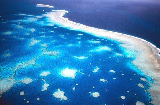 Korallensterben am Great Barrier Reef