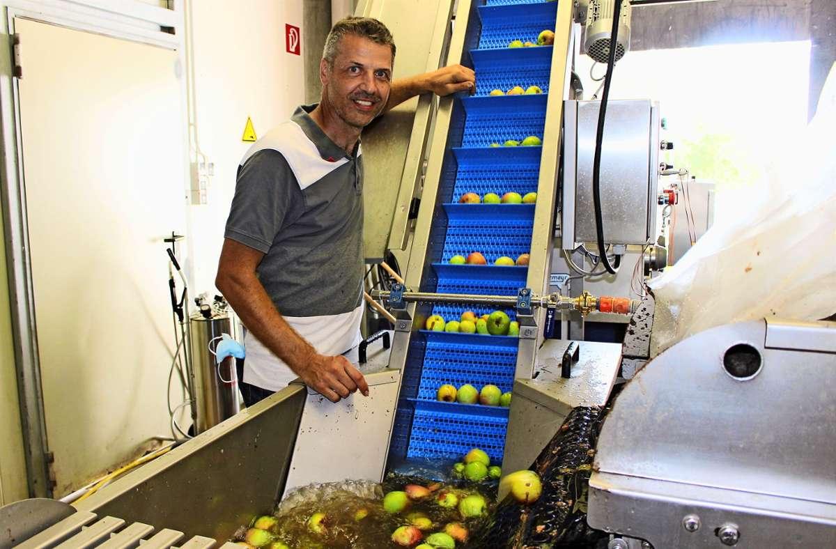 In der Manufaktur von Oliver Briem wird Obst sortiert, gewaschen, gepresst und der Saft pasteurisiert und abgefüllt. Foto: Caroline Holowiecki