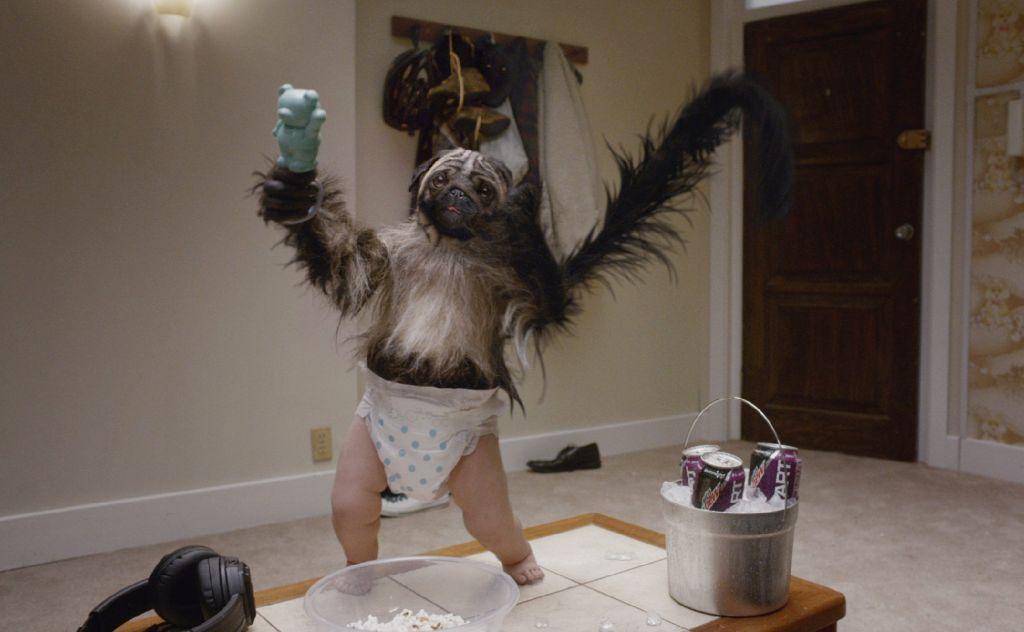 Ein Drittel Affe, ein Drittel Hund, ein Drittel Baby: Der Energydrink-Hersteller Mountain Dew... Foto: Nora Chin
