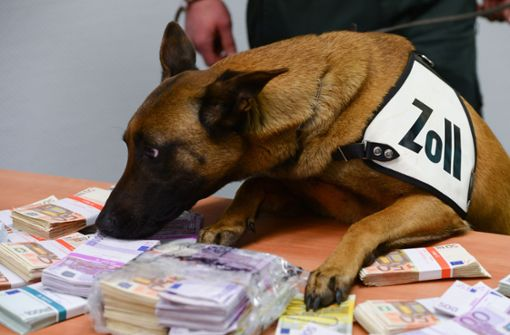 Spürhund Aki erschnüffelt amFlughafen fast 250 000 Euro Bargeld