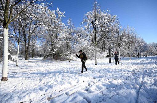 5000 Haushalte im Elsass nach Schneefällen ohne Strom