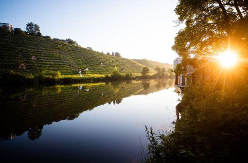 Der Neckar birgt unzählige Gefahren für Badende
