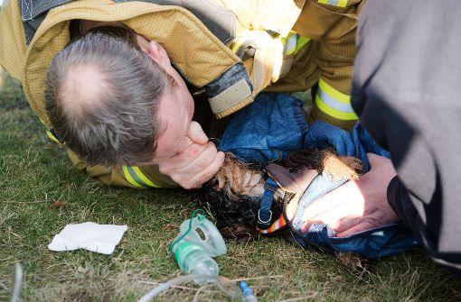 Feuerwehr kämpft vegebens um Dackel Finchen