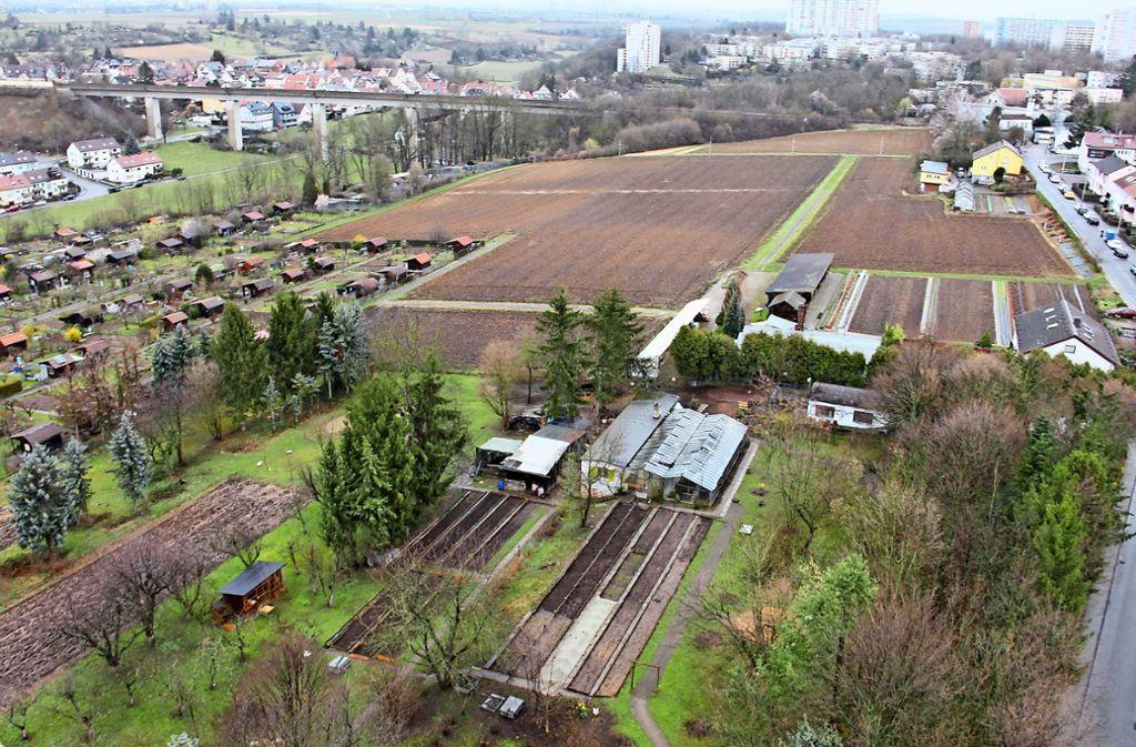 Der Garten des Immanuel-Grözinger-Hauses (im Vordergrund) soll erhalten bleiben. Auf dem Grundstück dahinter  möchte die SWSG 360 Wohnungen bauen. Foto: Bernd Zeyer