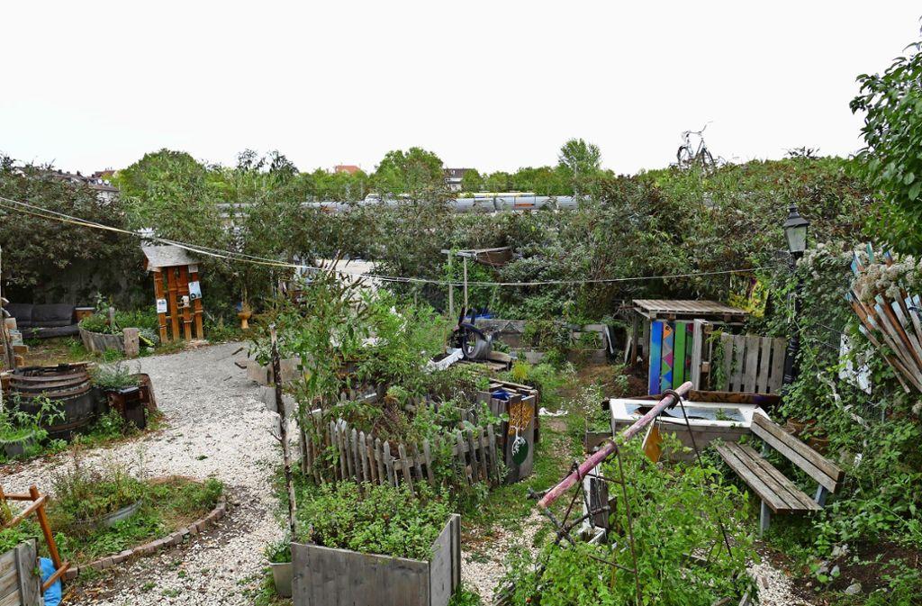 """Der """"Inselgrün""""-Garten muss als erstes dem neuen Areal weichen. Foto:"""