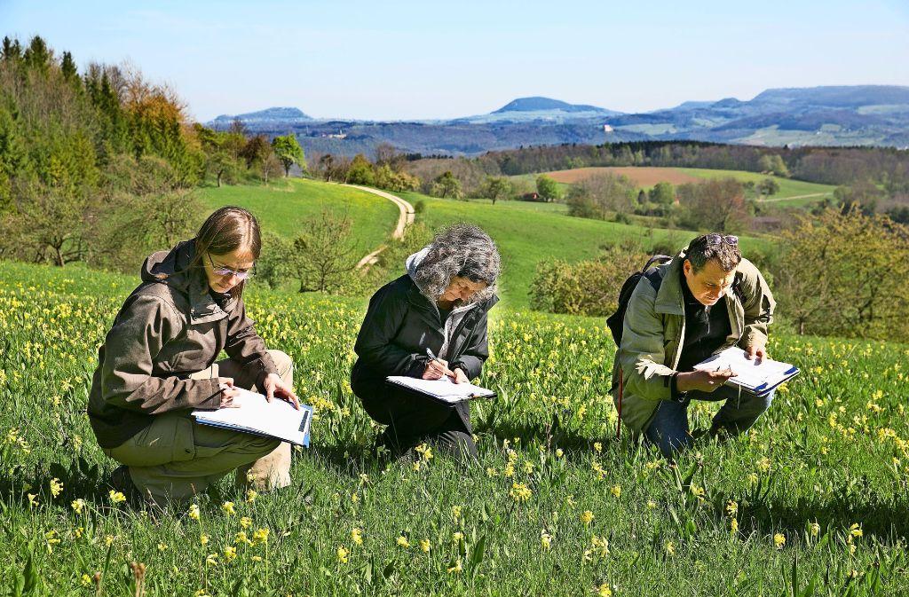 Im Dienste des Naturschutzes begutachten Fachleute die Biotope und Mähwiesen im Kreis Göppingen, und dank dieser wertvollen Daten können Landwirte Fördergelder beantragen. Foto: Horst Rudel