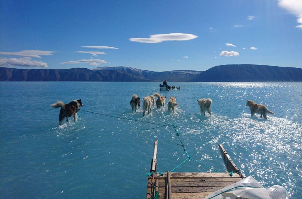 Grönlands Meereis steht unter Wasser Foto: Danmarks Meteorologiske Institut/dpa