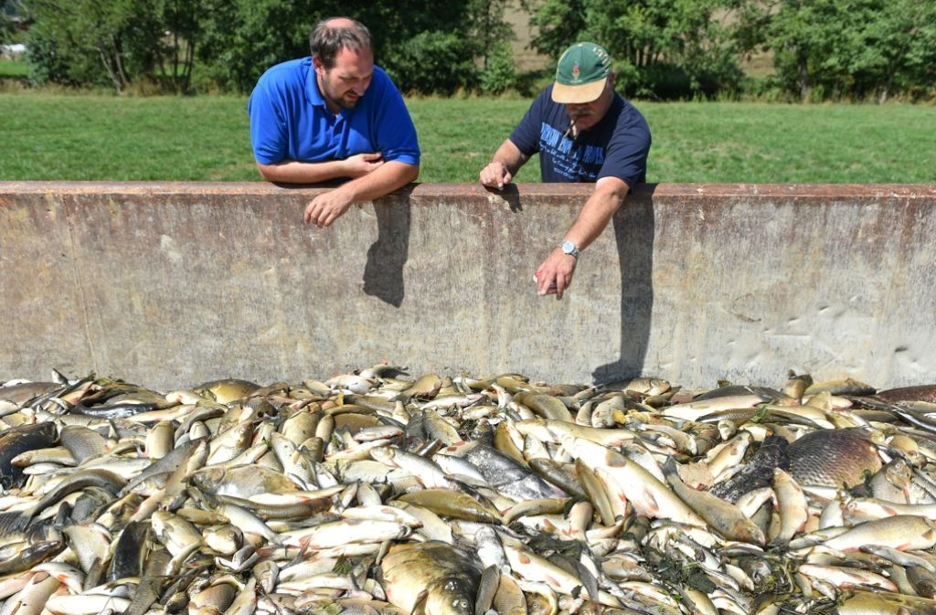 Giftiges Löschwasser hatte im August 2015 im Kreis Schwäbisch Hall ein großes Fischsterben in der Jagst ausgelöst. (Archivfoto) Foto: dpa