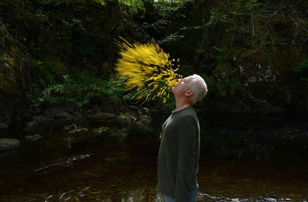 """Er spuckt Blütenblätter in die Landschaft: Der Künstler Andy Goldsworthy in """"Leaning into the Wind"""" Foto: Haus des Dokumentarfilms"""