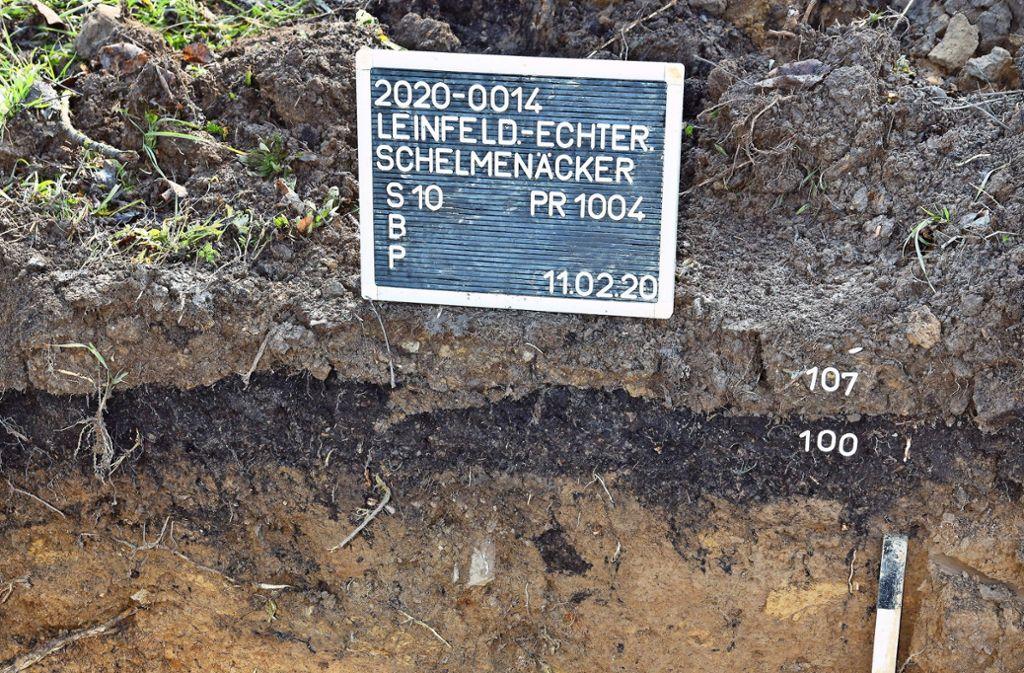 Bereits im Februar hatten Archäologen den Baugrund in den Schelmenäckern unter die Lupe genommen. Foto: Archiv  Günter E. Bergmann