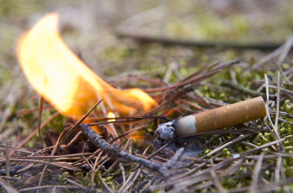 Eine achtlos weggeworfene Kippe – und schon kann der Wald Feuer fangen. Foto: dpa/Patrick Pleul
