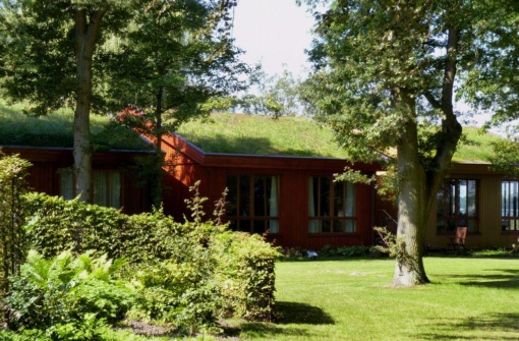 Solch üppiges Grün sprießt nur selten auf hiesigen Dächern. Im Erweiterungsteil des Gewerbegebietes in Ebersbach-Roßwälden kann die Verwaltung ihre ökologischen Ideale zur Begrünung der Hallen wohl nicht durchsetzen, den Gewerbetreibenden sind die Kosten zu  hoch. Foto: dpa