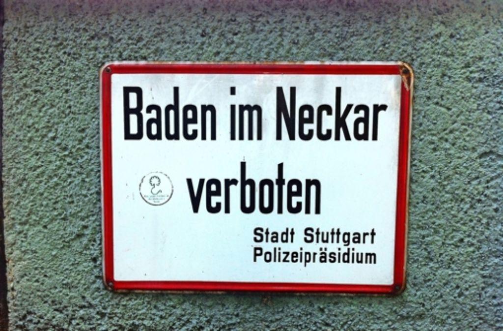 Die Cannstatter CDU will, dass die Stadt das  Badeverbot im Neckar kippt. Foto: Annina Baur
