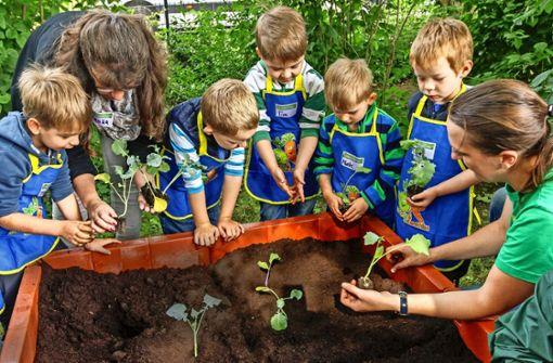 Städte kämpfen um Kindergartenplätze