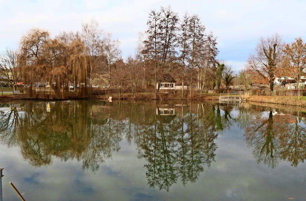 Der Tiefbrunnen am  Heimsheimer See könnte bald wieder in Betrieb gehen. Foto: Andreas Gorr