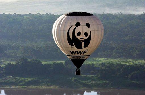WWF untersucht Vorwürfe über Unterstützung brutaler Wildhüter