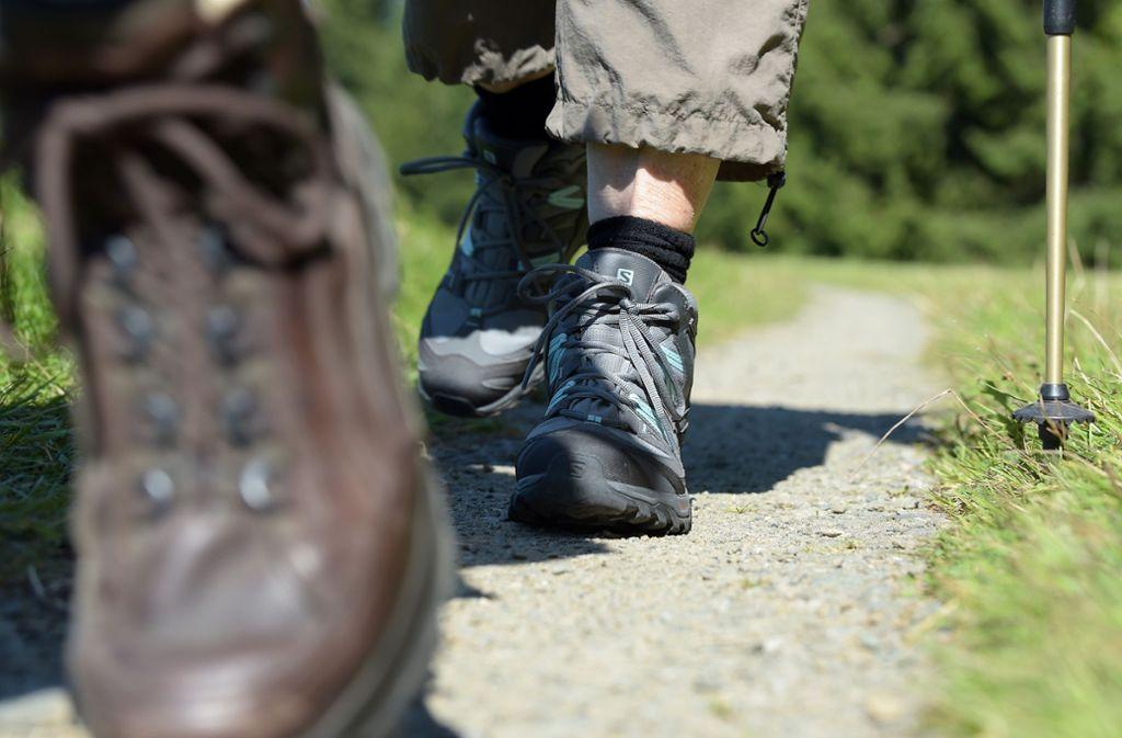 Ein Deutscher ist beim Wandern in Österreich tödlich verunglückt. (Symbolfoto) Foto: dpa