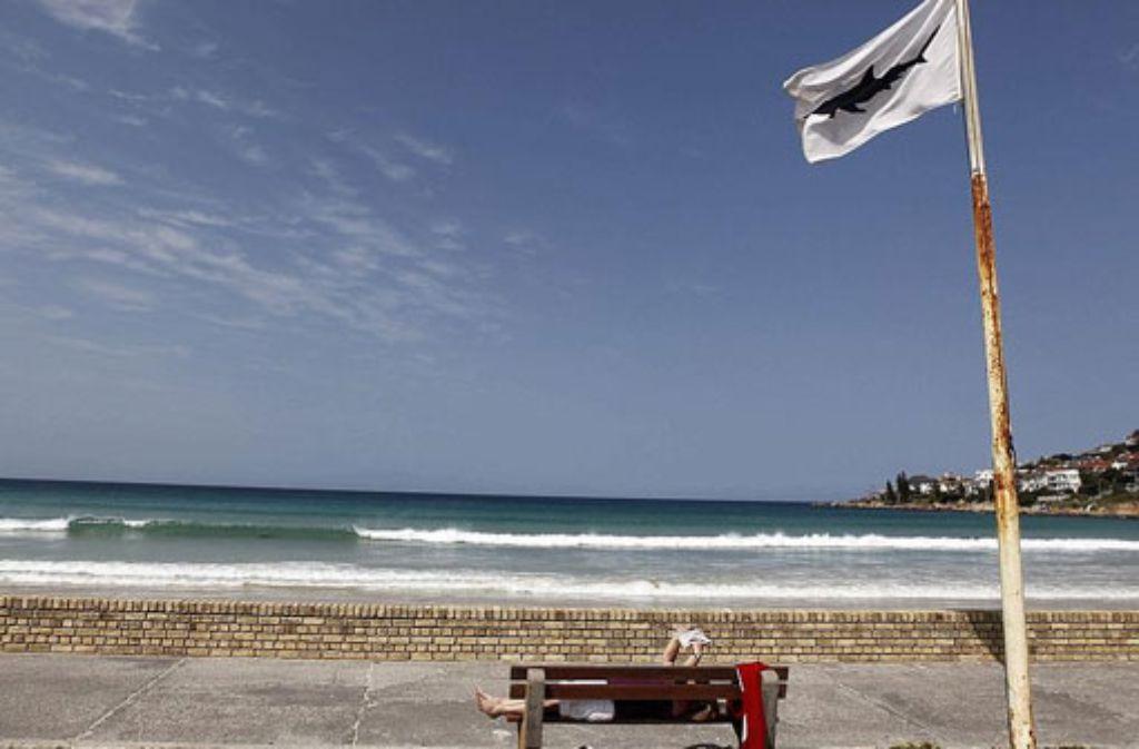 Am Roten Meer ist ein deutscher Tourist nach einem Hai-Angriff gestorben. (Symbolbild) Foto: dpa