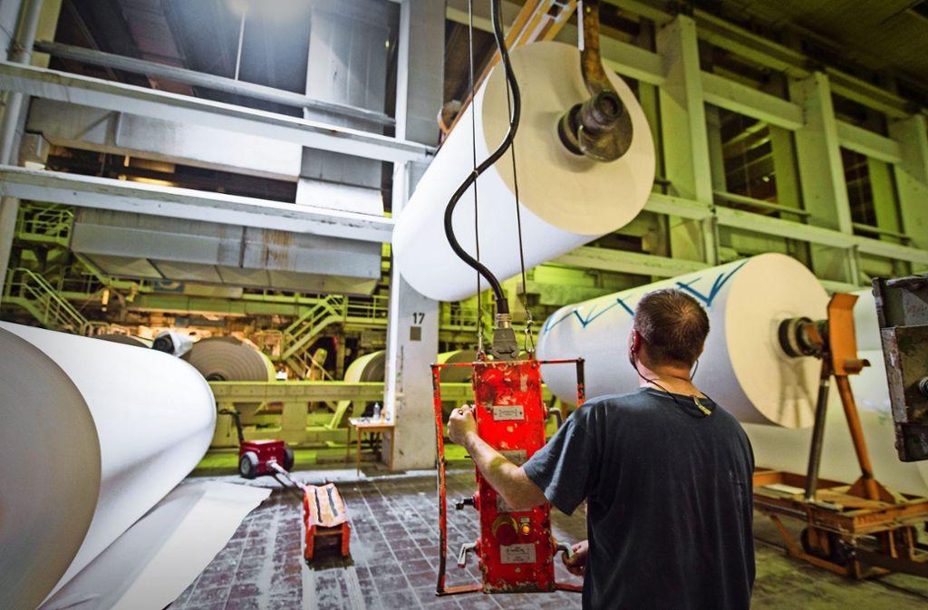 """Mit """"Graspapier"""" in die Zukunft: Fertigung in der Papierfabrik Scheufelen Foto: dpa"""
