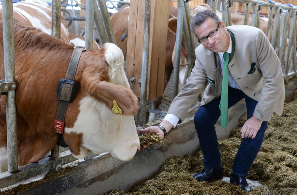 Landwirtschaftsminister Peter Hauk (CDU) sorgt sich um die Existenznöte der Milchviehhalter. Foto: dpa