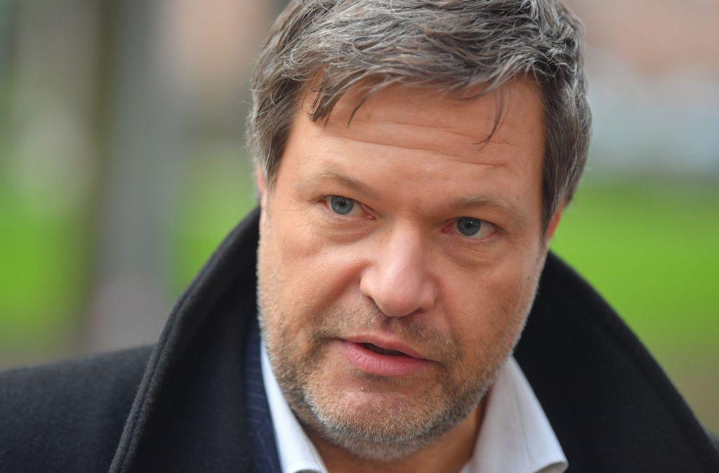 GrünenChef Robert Habeck ist in die Kritik geraten. Foto: dpa-Zentralbild