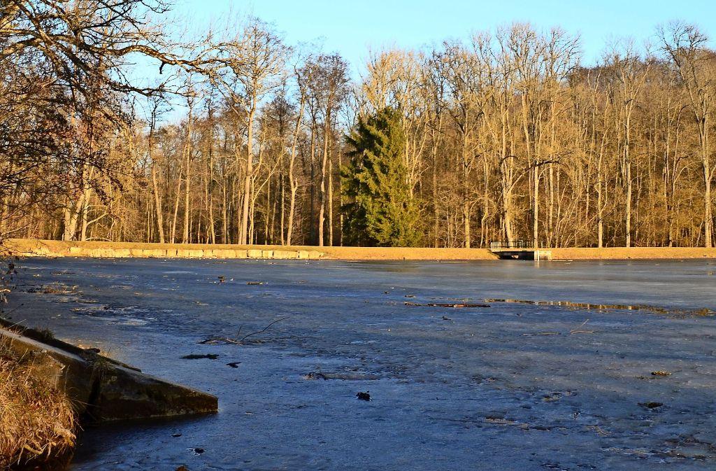 Ginge es nach Peta, könnte  das Angeln am Katzenbachsee bald verboten sein. Noch ist allerdings nicht entschieden, wer die Seen bekommt. Foto: Sandra Hintermayr