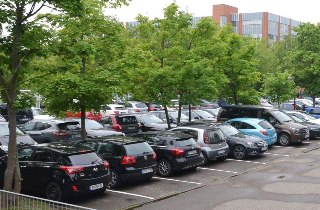 Grün statt Parkplätze, das war eine der Ideen im Bezirksbeirat. Foto: Sandra Hintermayr