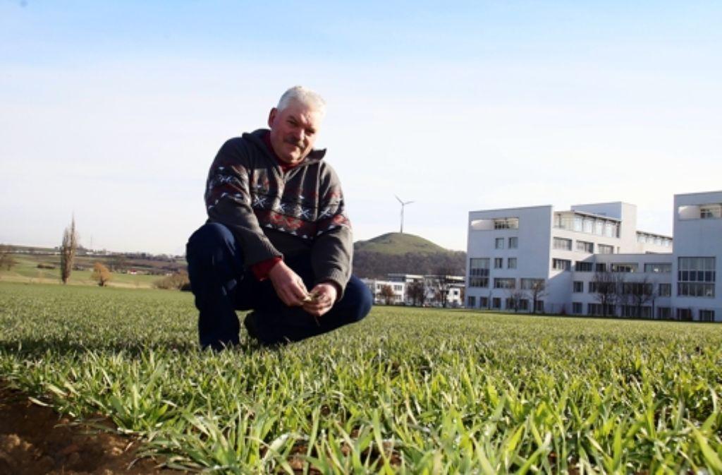 """Der Weilimdorfer Bauer Konrad Ritz ist mit den Gedeihen des Winterweizens zufrieden. """"Ob die Ernte gut wird, entscheidet sich aber im Juni oder Juli"""", sagt er. Foto: Leonie Hemminger"""
