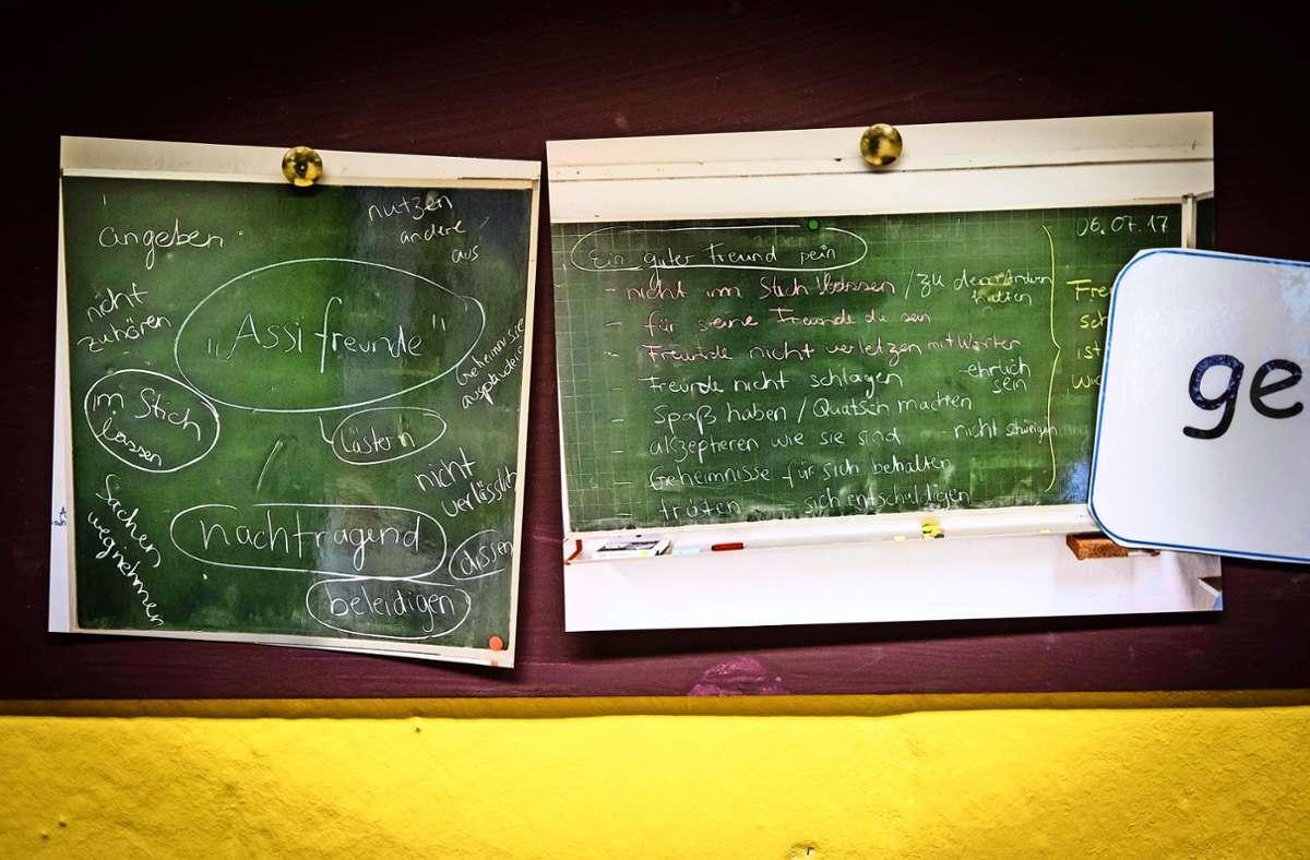 Auch soziales Verhalten will gelernt sein. Foto: Lichtgut/Achim Zweygarth