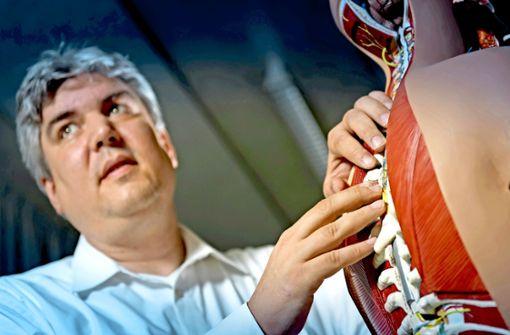 Wie Stuttgarter Forscher Muskeln im Computer entstehen lassen