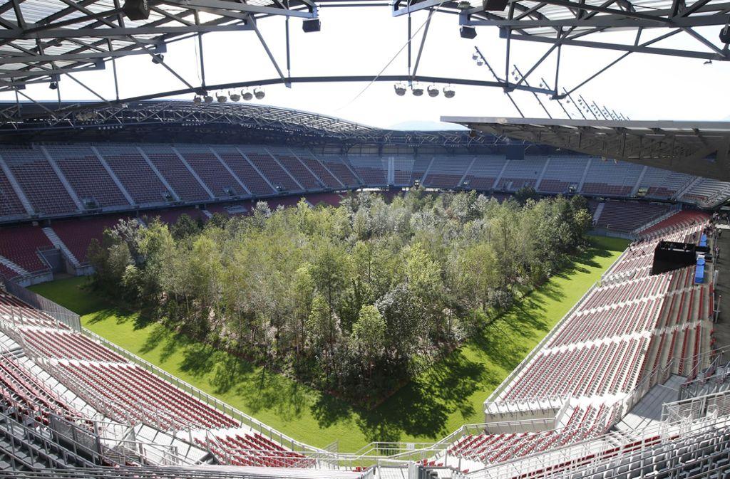 Bäume im Stadion sollen ein Mahnmal zum Schutz des Waldes sein. Foto: dpa