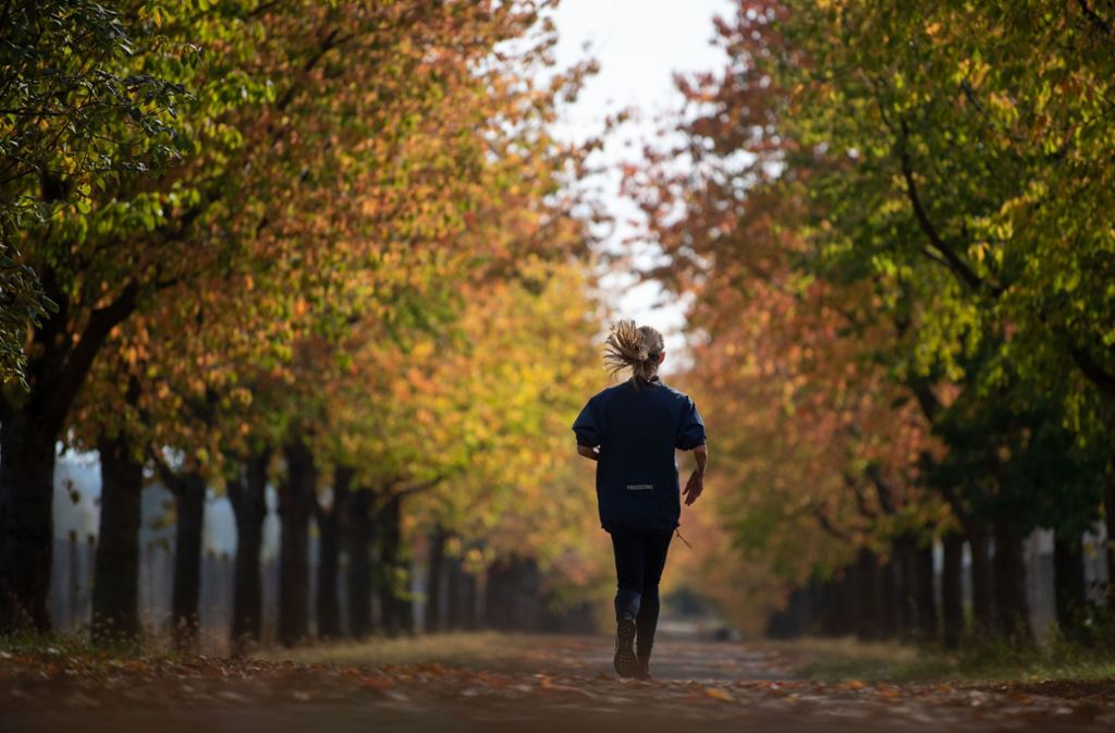Der Oktober zeigte sich in Stuttgart und Region von seiner schönsten Seite. Foto: dpa