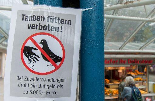 Füttern verboten!