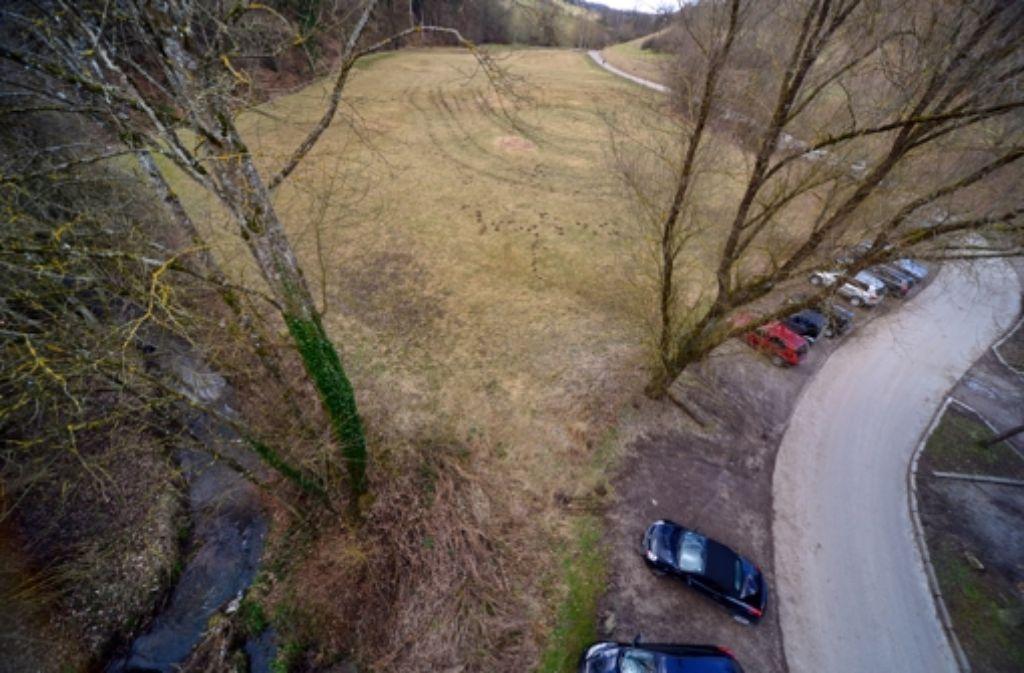 Auf der Wiese zwischen Reichenbach (links) und Mühlenweg soll der neue Parkplatz entstehen. Foto: Norbert J. Leven