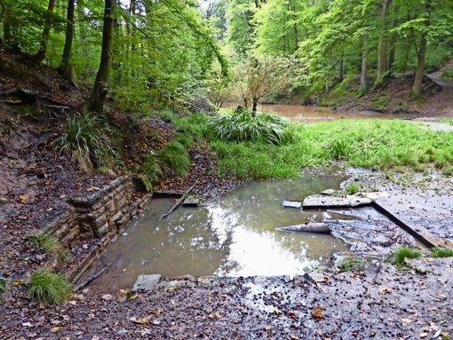 Verschönerung der Dürrbachquelle